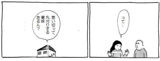141113c.jpg