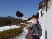 山のホテル庭園妊娠