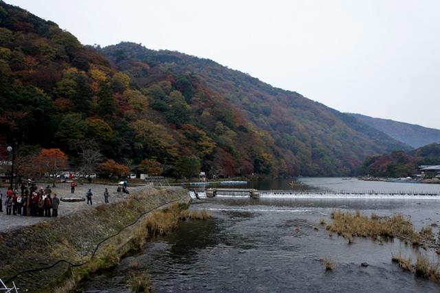 20111128arasiyama.jpg
