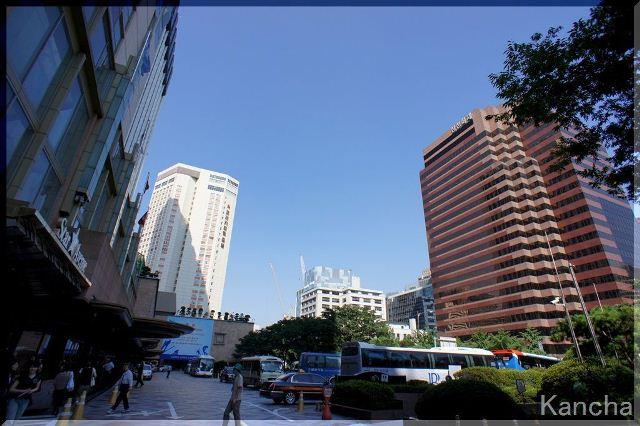 2011myondon1-1.jpg