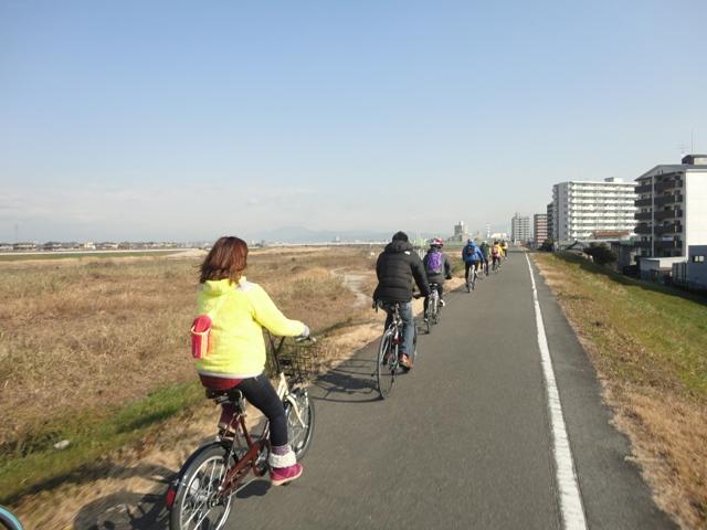 20120109sairo2.jpg