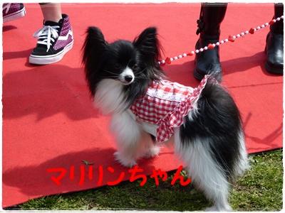 100323_道満3