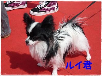 100323_道満4
