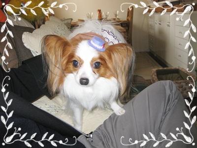100419_お誕生日会1