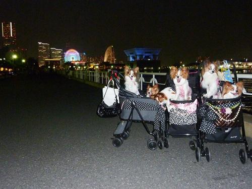100819_横浜オフ26