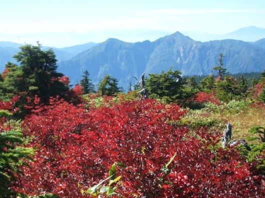 紅葉と鳥甲山