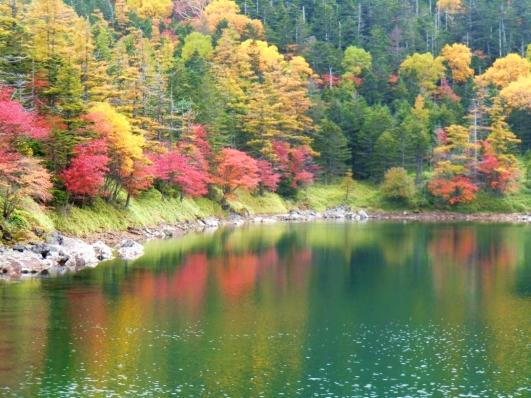 雄池に映る紅葉