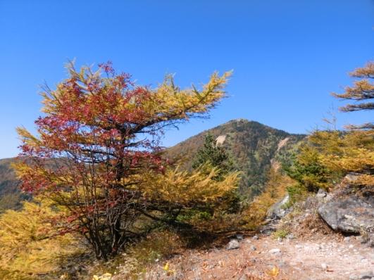 東籠の登山