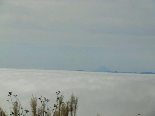 富士山も浮かぶ