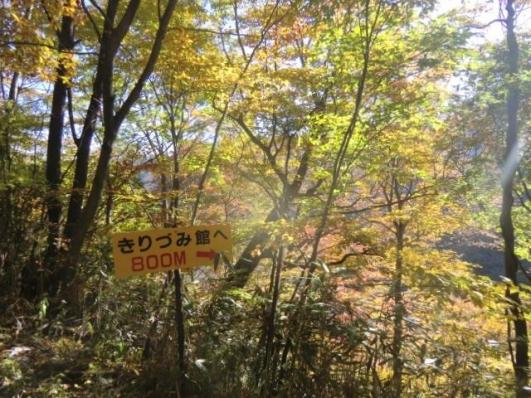 林道から登山道へ