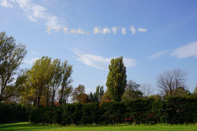 DSC01807_7625.jpg