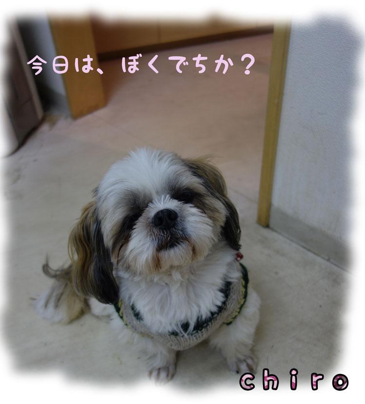 DSC01912_8104.jpg