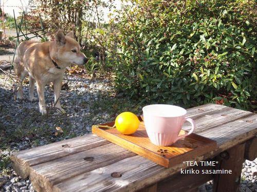 teatimename500.jpg