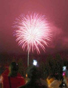 平瀬温泉の夜空を彩る花火=白川村平瀬で