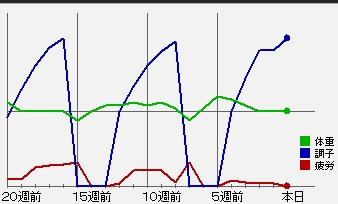 2010y02m02d_183430627.jpg