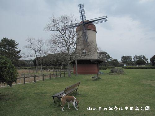 誰もいない中田島公園。