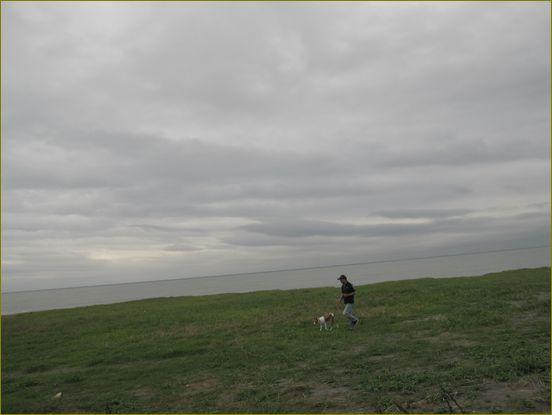 老人と海とケント