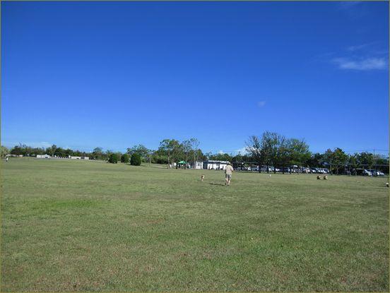 公園の隅でマーチングバンドの練習をしていた。