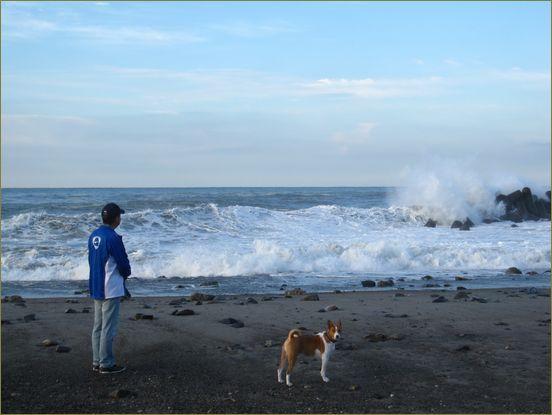 海が荒れています。台風のせいかな・・