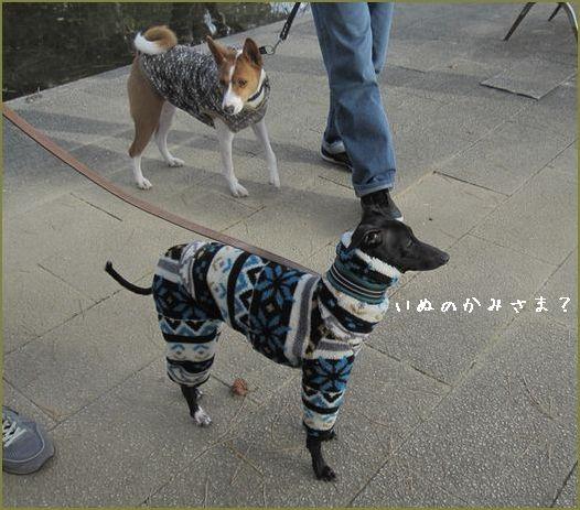 毎年恒例の犬の神様に初詣。
