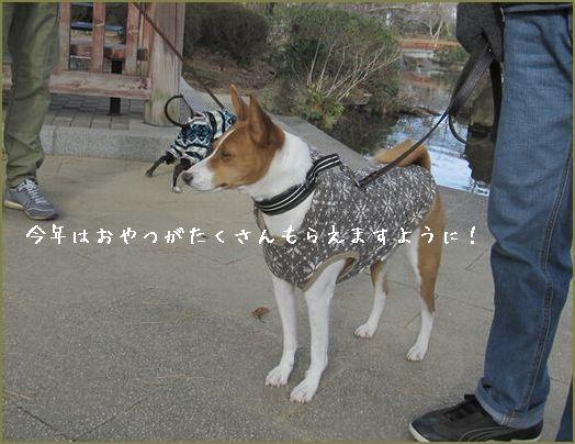 お賽銭は15円、おほほっ!