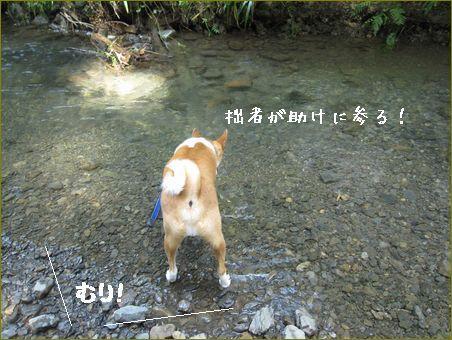 ケントじゃ無理!
