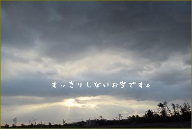 朝の空の色です。