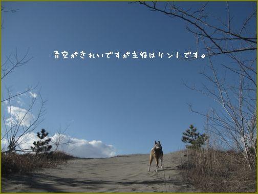 真っ青な空。気分爽快!そうかい。