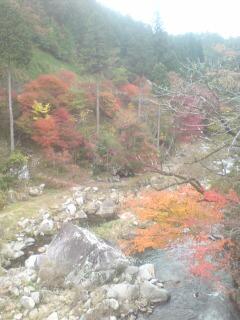 大井平景色001