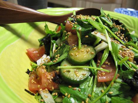 ピリ辛きゅうサラダ
