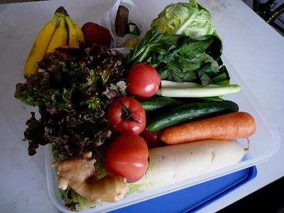 6月一週間分の野菜