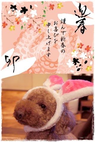 2011_N_BLOG.jpg