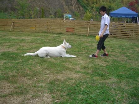 CIMG9144_20110512085859.jpg
