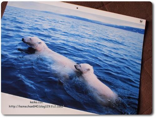 WWFのカレンダー