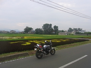 R0010526.jpg