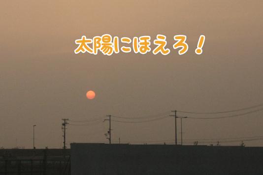 IMG_0744.jpg