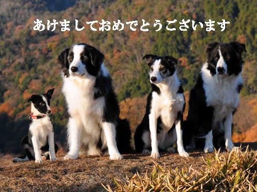 2013_ketr-01.jpg