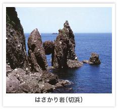 image05.jpg