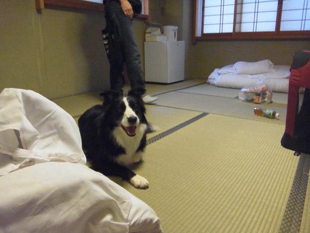名古屋の宿にて