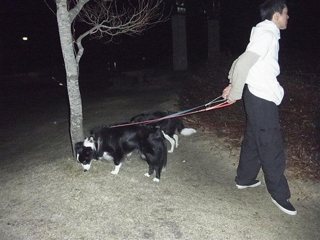 2012年4月28日 22:30@蒜山高原サービスエリア