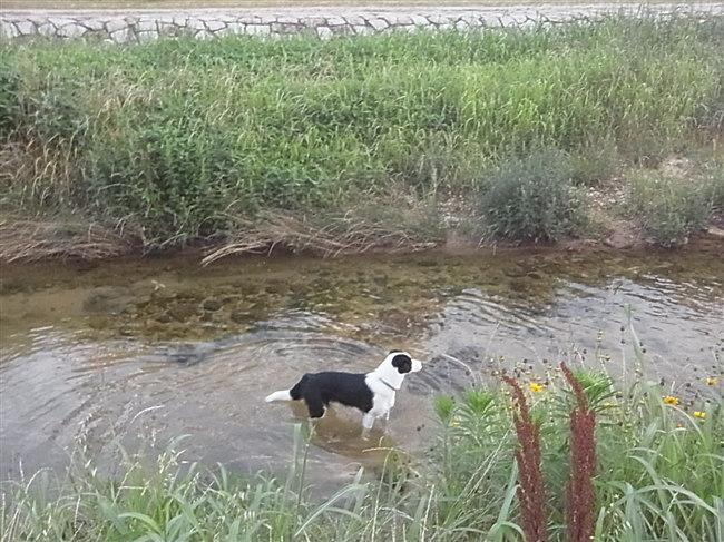 水遊び、最高