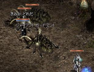633_20110517101440.jpg