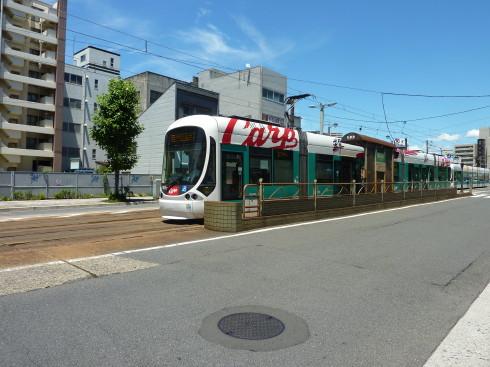 P1000145(1).jpg