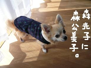 P1050706-deji.jpg