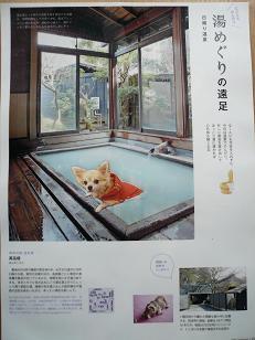 P1050852-deji.jpg