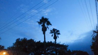 神道の夜景