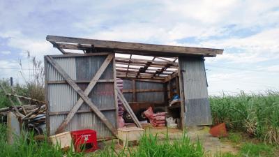 壊れた作業小屋2