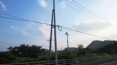 11.4.28電線