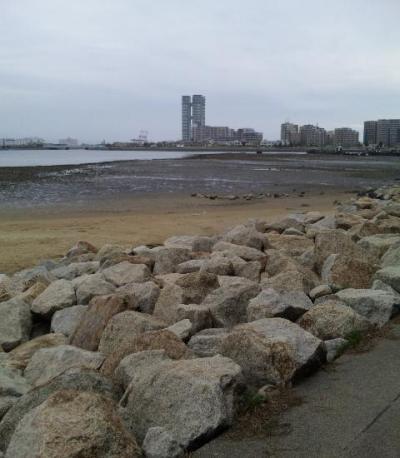 20100406香椎海岸遊歩道