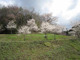 toshimamori120418